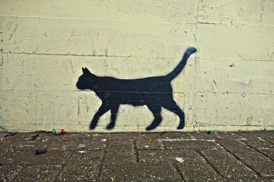 Exercice : Un chat qui raconte le meurtre de son maitre à quelqu'un de bourré